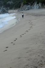 Spuren im Sand, Costa Brava